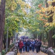 Pielgrzymka do Lichenia 2018-9